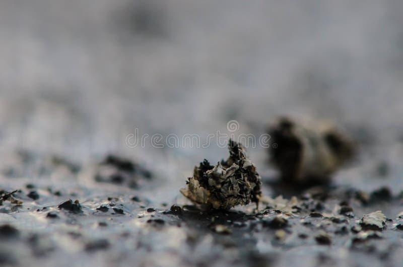 Cinzas no concreto imagens de stock royalty free