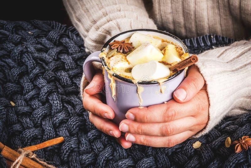 Cioccolata bianca piccante calda della zucca fotografia stock