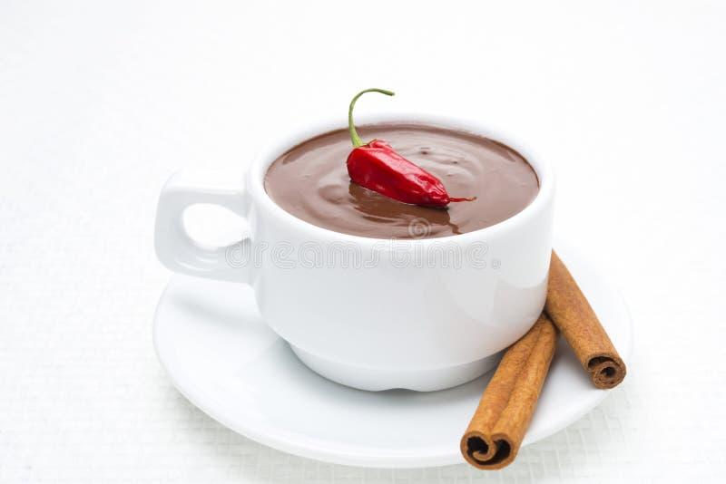 Cioccolata calda con cannella ed il peperoncino rosso immagini stock libere da diritti