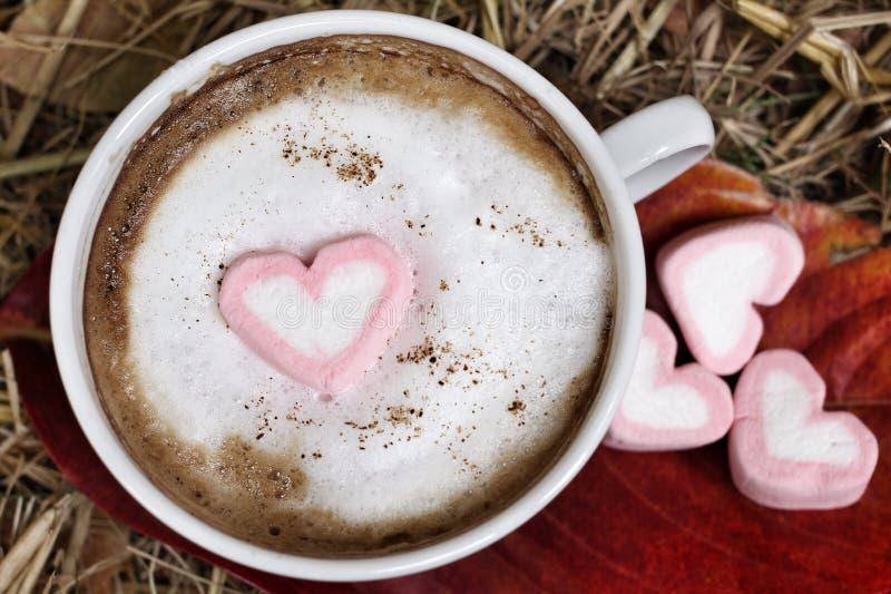 Cioccolata calda con la caramella gommosa e molle di rosa del cuore immagini stock libere da diritti
