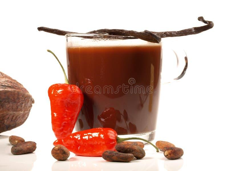 Cioccolata calda messicana con vaniglia su fondo bianco fotografia stock libera da diritti