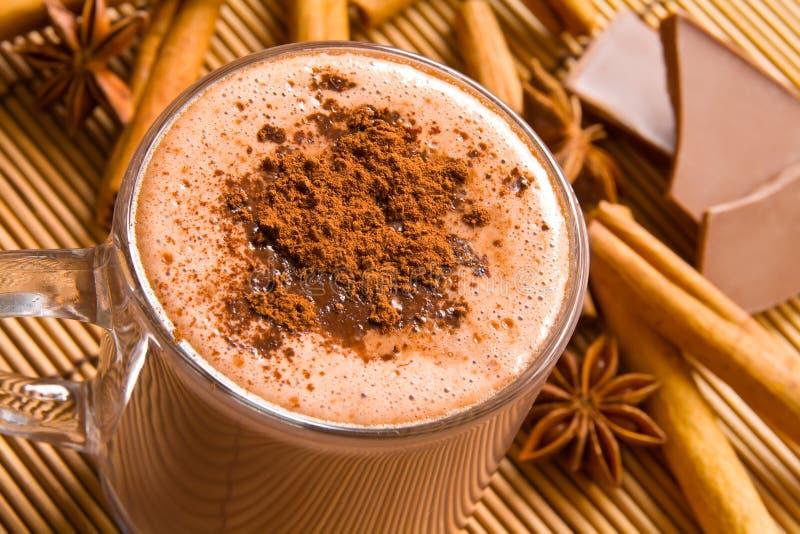 Cioccolato caldo e spezie fotografie stock libere da diritti