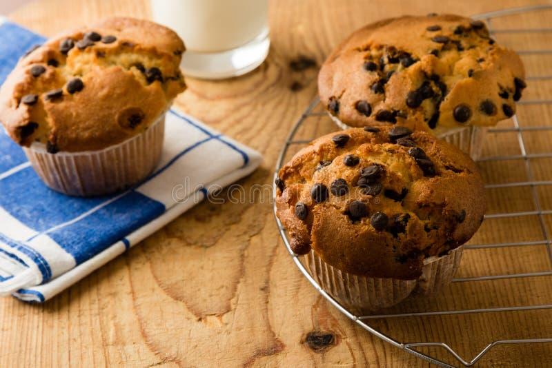 Cioccolato Chip Muffins fotografie stock