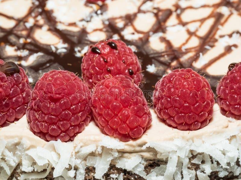Cioccolato Framboise Layer Cake immagine stock