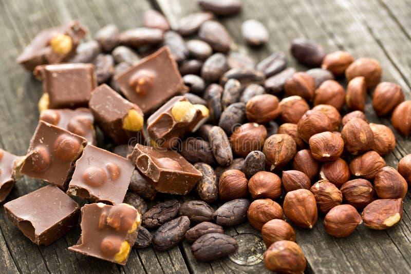 Cioccolato, nocciole e fave di cacao immagine stock