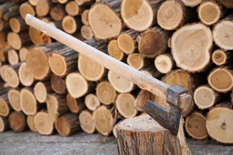 Cioska w drewnie obrazy stock