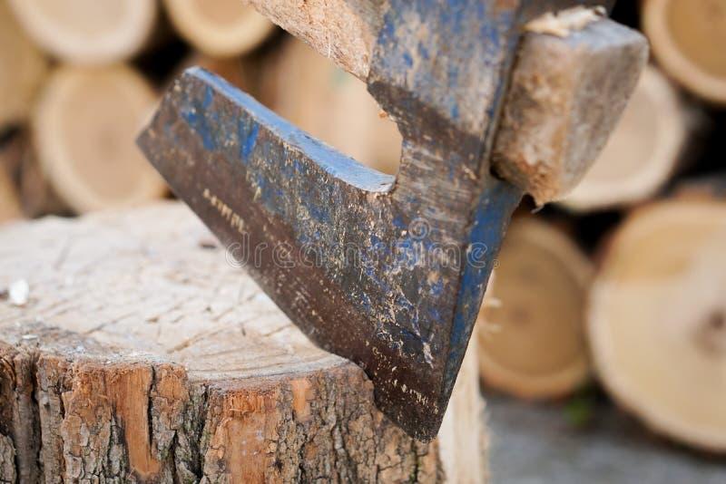 Cioska w drewnie zdjęcia stock