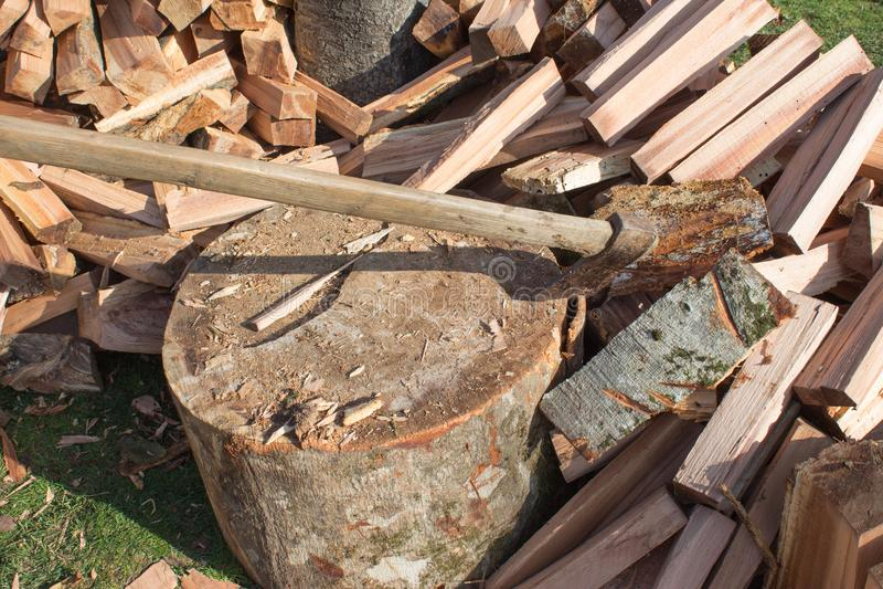 Cioska wtykająca w fiszorku Przyrząd dla siekać drzewa Narządzanie łupka Ciapania drewno dla paliwa obraz royalty free