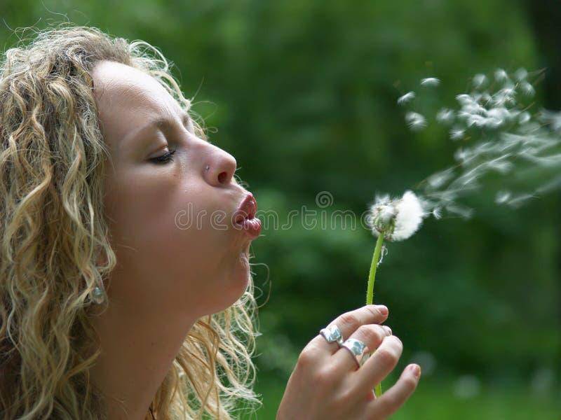 ciosu kędzierzawa dandelion dziewczyna zdjęcia royalty free