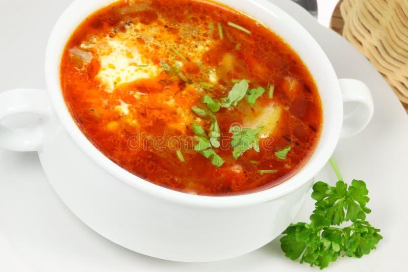 Ciotola di borscht. fotografie stock