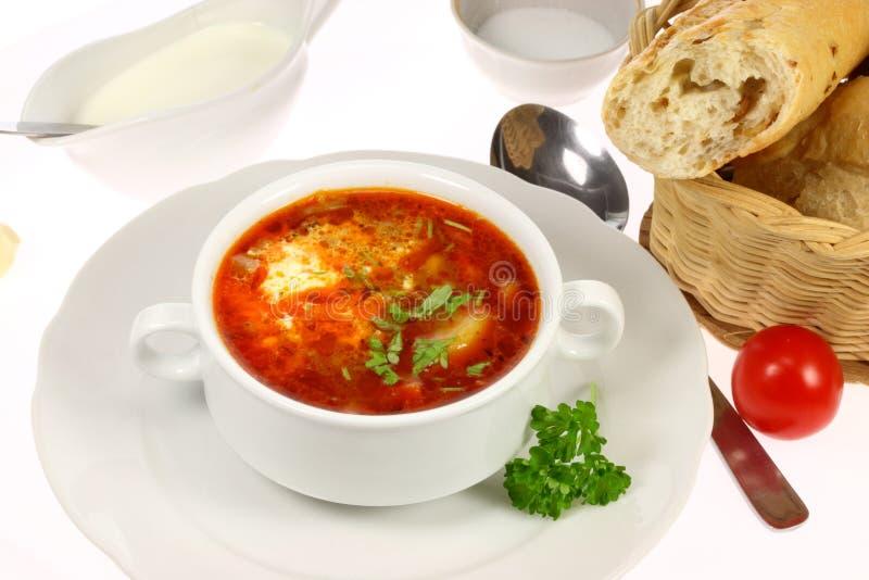 Ciotola di borscht. fotografia stock libera da diritti