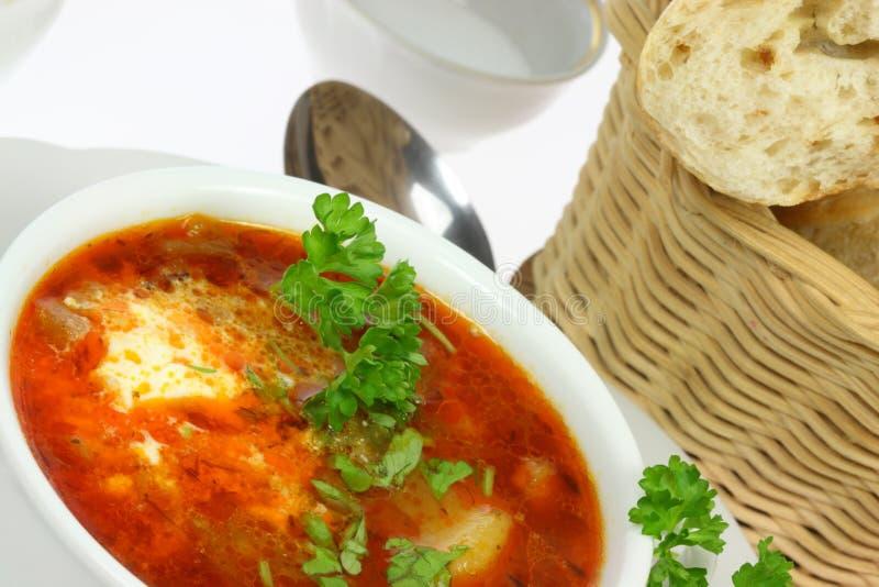Ciotola di borscht. immagine stock libera da diritti