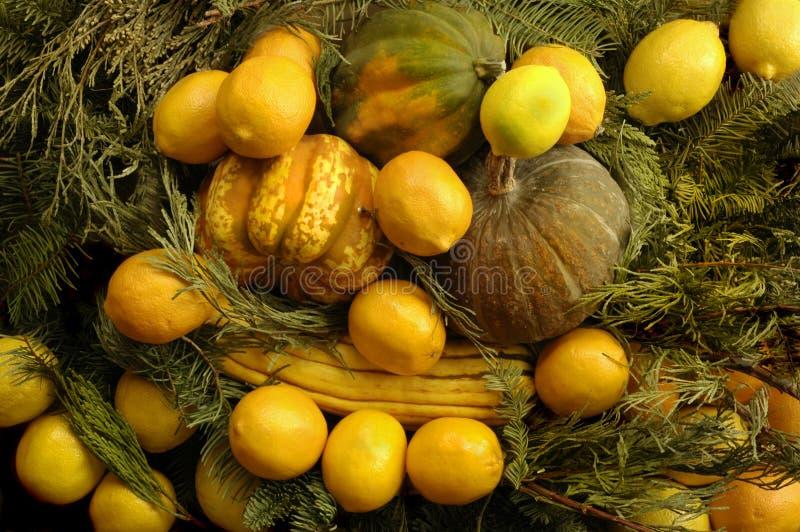 Ciotola di frutta & della zucca immagini stock
