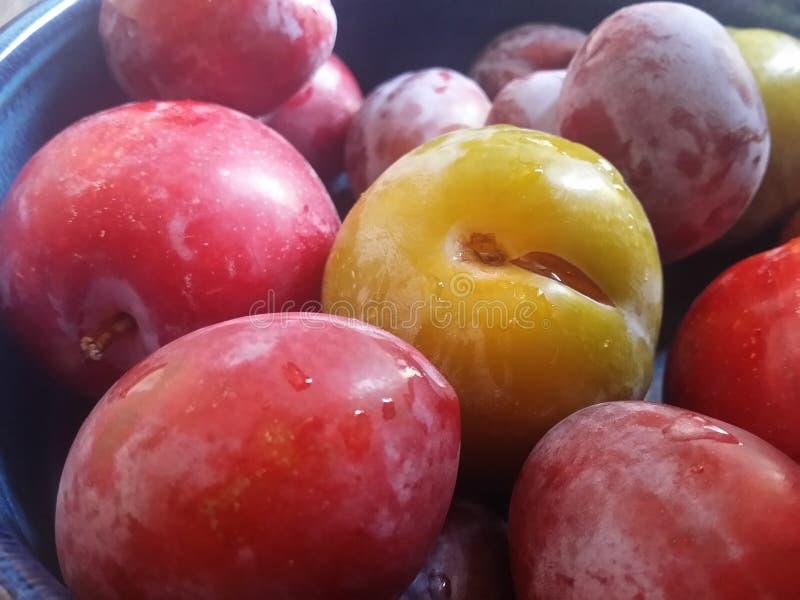 Ciotola di frutta spagnola locale fotografie stock libere da diritti