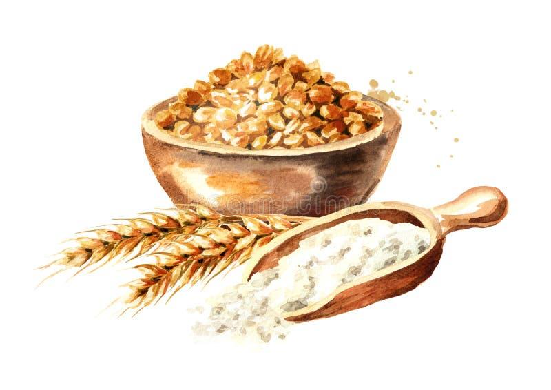 Ciotola di grano, orecchie di grano e mestolo di legno con farina Illustrazione disegnata a mano dell'acquerello, isolata su fond royalty illustrazione gratis