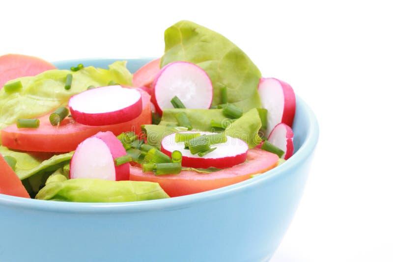 Ciotola di insalata immagini stock libere da diritti