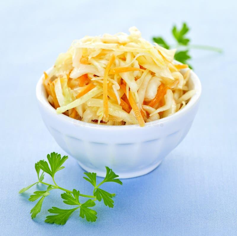 Ciotola di insalata di cavoli immagine stock