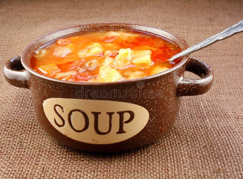 Ciotola di minestra di verdura fotografia stock