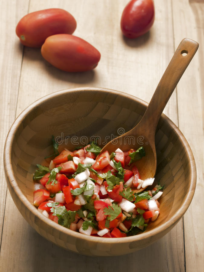 Ciotola di salsa fresca fotografia stock libera da diritti