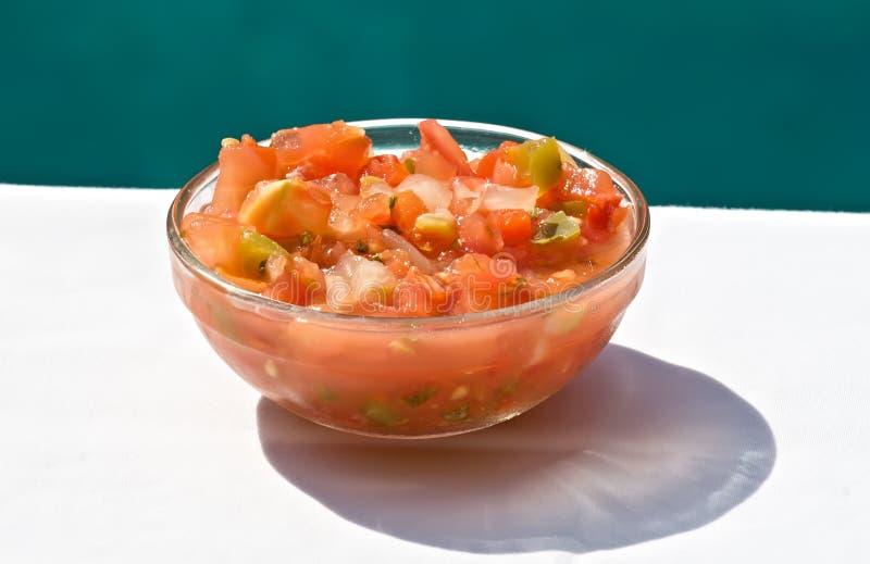 Ciotola di salsa fresca fotografie stock libere da diritti