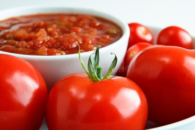 Ciotola di salsa rossa con i pomodori fotografia stock libera da diritti