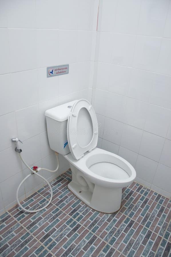 Ciotola di sciacquone della toilette con sciacquone immagine stock libera da diritti