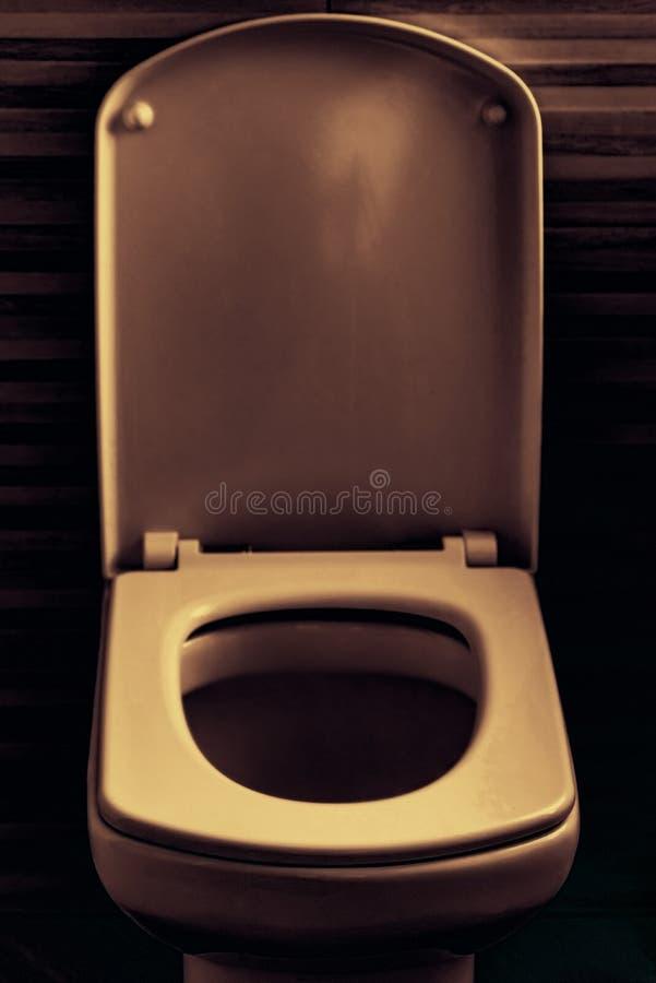 Ciotola di toilette con sciacquone del primo piano in lavabo, seppia immagine stock libera da diritti