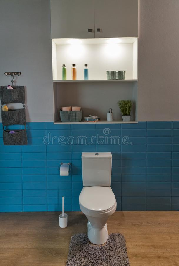 Ciotola di toilette nel bagno fotografia stock libera da diritti