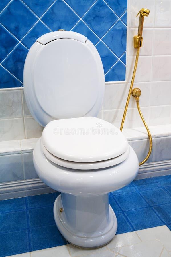 Ciotola di toilette immagini stock