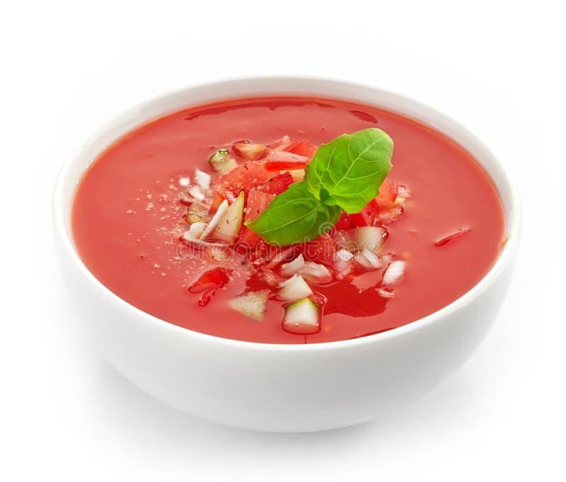 Ciotola di zuppa di verdure fredda fotografie stock libere da diritti