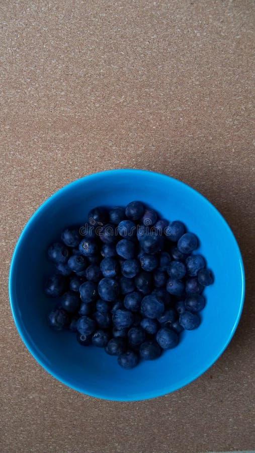 Ciotola rotonda blu luminosa di mirtilli freschi immagini stock libere da diritti
