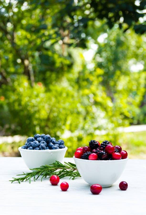 Ciotole con le bacche fresche su una tavola bianca nel giardino More, mirtilli e mirtilli rossi immagini stock