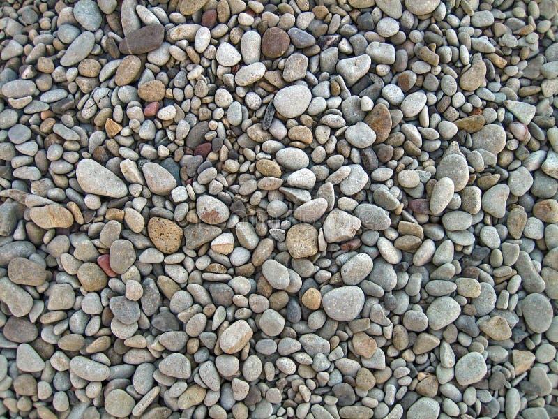 Ciottoli asciutti senza fine del mare, struttura, fondo Ciottoli grigi, piccolo, ovale immagine stock