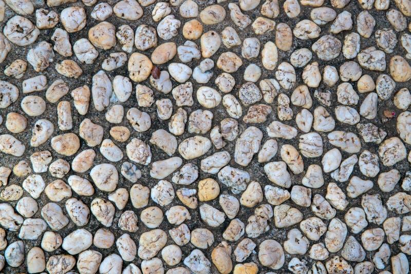 Ciottolo bianco in percorso concreto Fondo della pietra di vista superiore Struttura della foto del ciottolo della spiaggia Super immagine stock libera da diritti