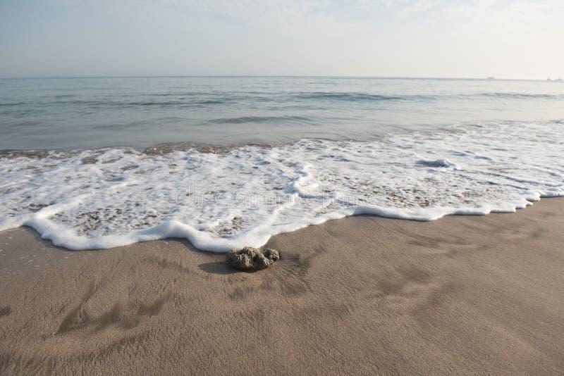 Ciottolo d'avvicinamento di Wave sulla sabbia della spiaggia fotografie stock