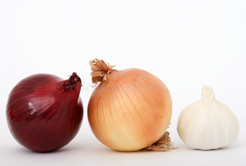 Cipolla ed aglio fotografia stock