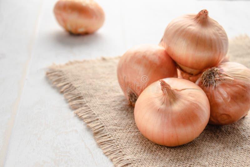 Cipolla fresca su fondo di legno e su tela da imballaggio Allium cepa delle cipolle o cipolle o alimento maturi del vegano e del  fotografie stock libere da diritti