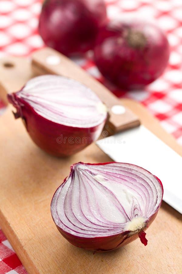 Cipolla rossa affettata in cucina fotografia stock
