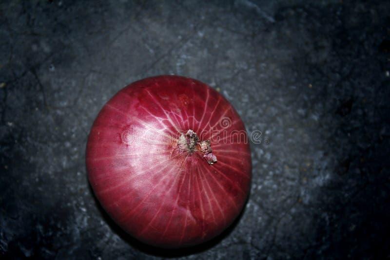 Cipolla rossa nel fondo nero fotografia stock