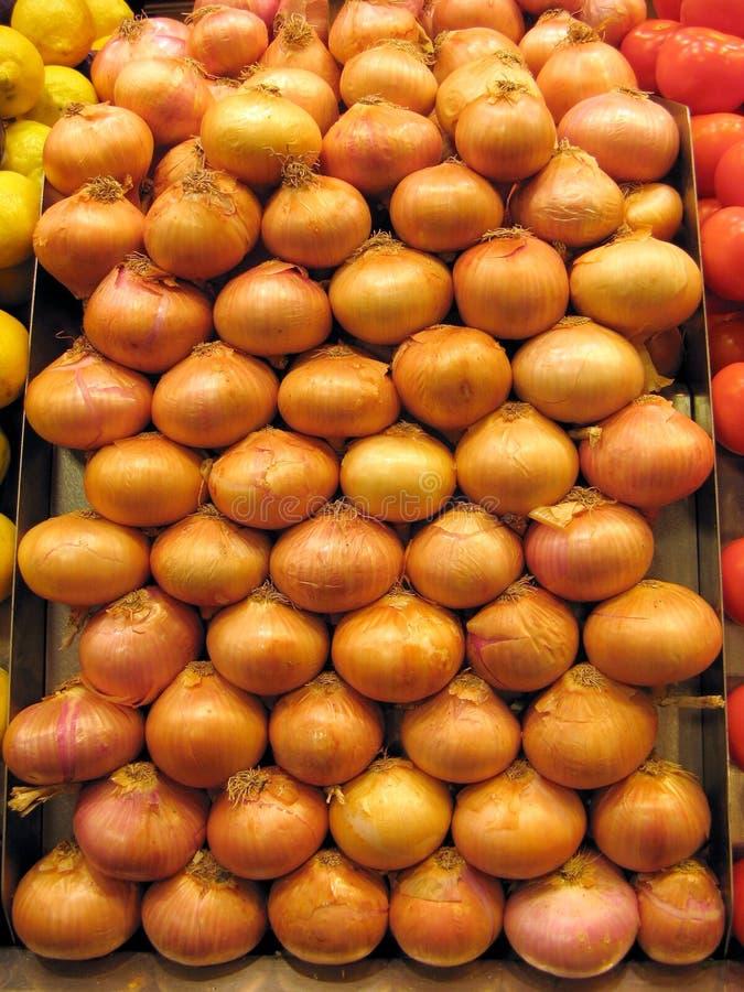 Cipolle immagine stock