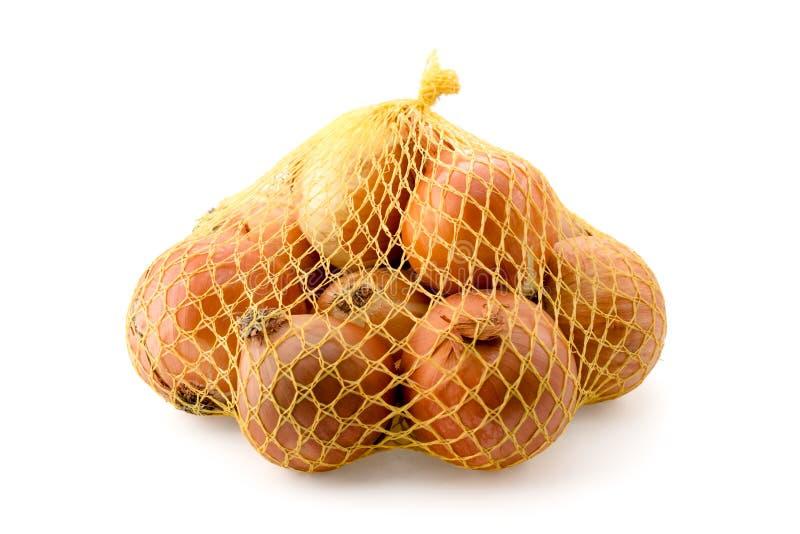 Cipolle in borse isolate immagine stock