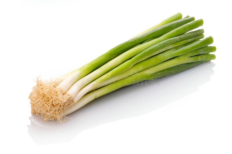 Cipolle della cipolla di inverno di verdure su bianco fotografie stock