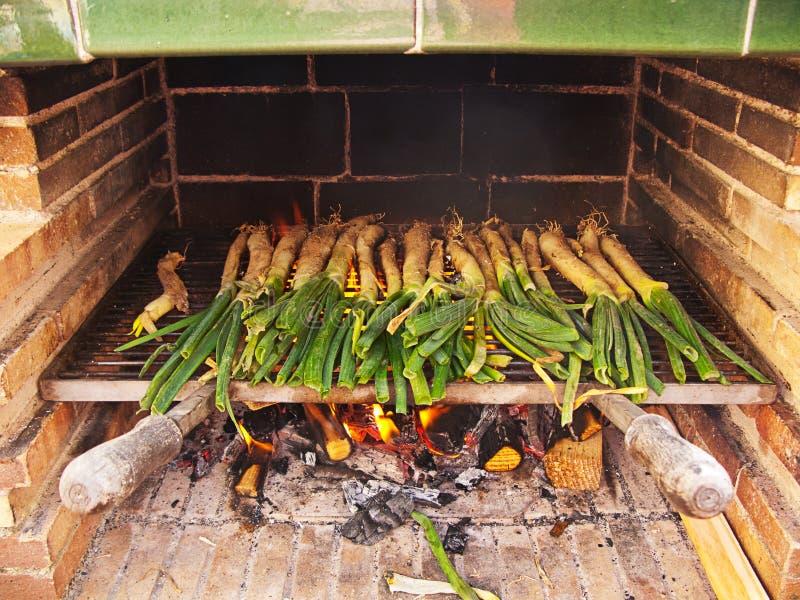 Cipolle della sorgente sul barbecue fotografia stock libera da diritti