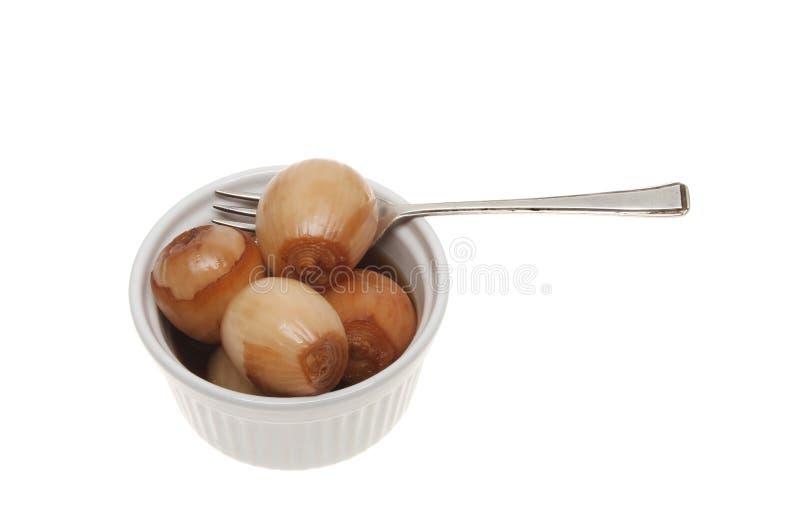Cipolle marinate immagini stock