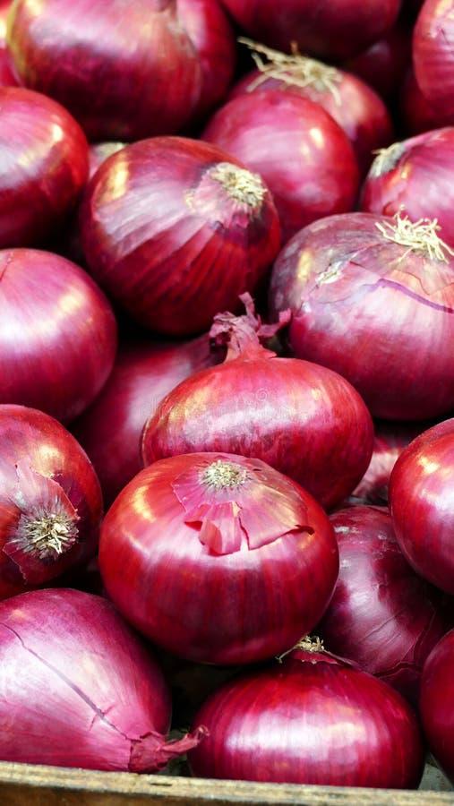 Cipolle rosse fresche, naturali, dolci da vendere ad un mercato degli agricoltori fotografia stock