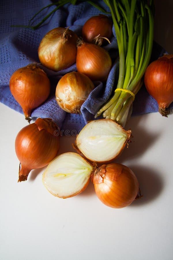Cipolle su bianco fotografia stock