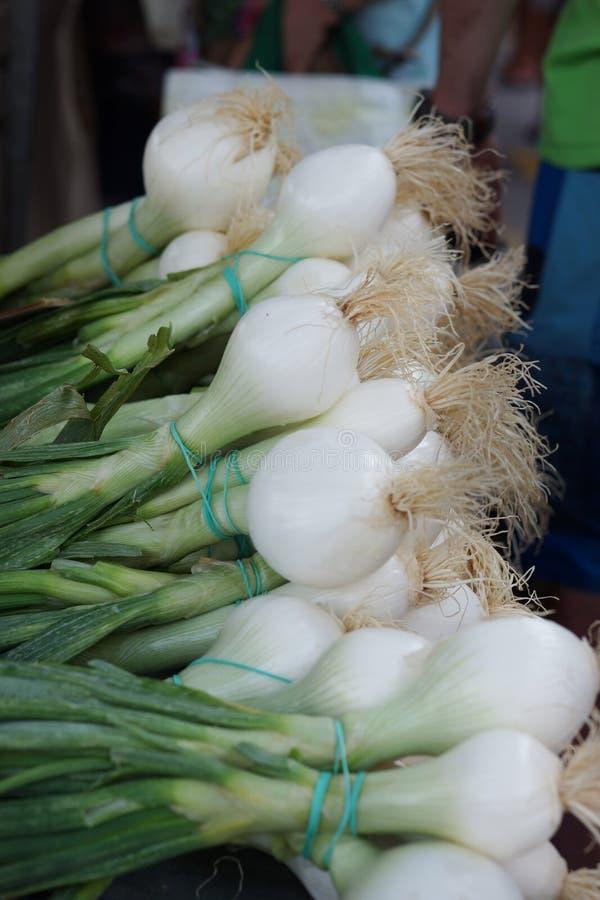 Cipolle verdi con una cipolla bianca e radici sul contatore nel mercato di verdure fotografia stock libera da diritti