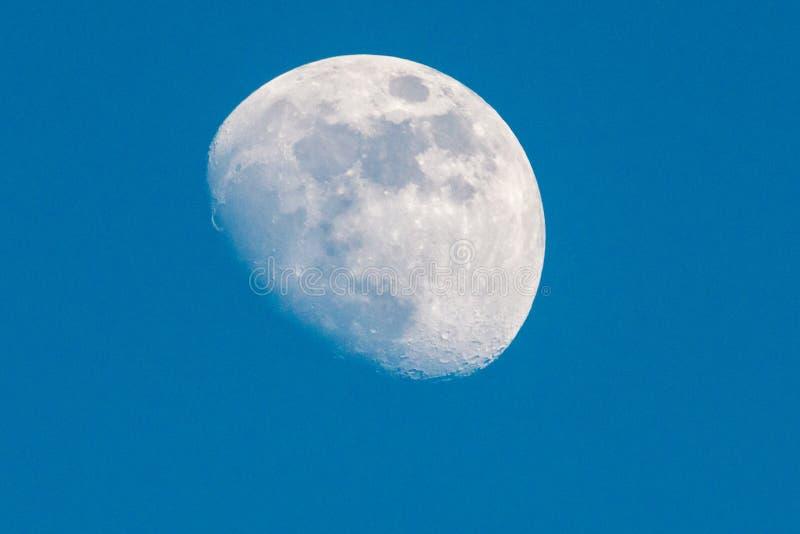 Cirage du plan rapproché gibbbeux de lune image stock