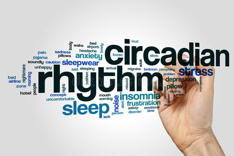 Circadian rhythm word cloud. Concept royalty free stock images