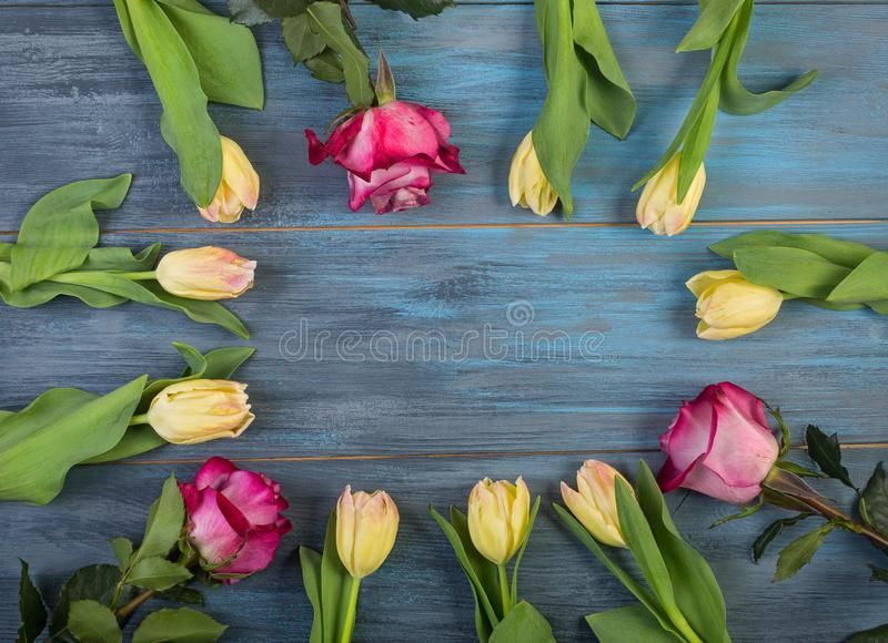 Circle of flowers on blue background royalty free stock photo